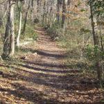 Arlington, Virginia's Top 4 Basecamps for Hikers