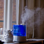 Your Humidifier Can Save Your Life!